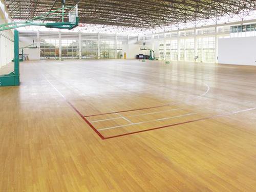 籃球(qiu)場(chang)PVC工程